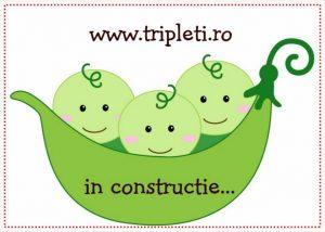 tripletiinconstructie