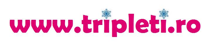 Tripleti.ro – Sticker auto gratuit gemeni, tripleti si multipleti la bord, sarcina, inseminare si FIV